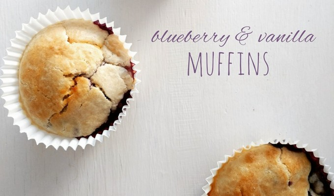 Blueberry and Vanilla Muffins