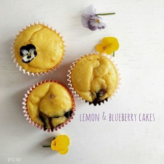Lemon and Blueberry Cakes