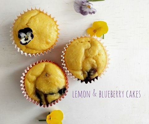 Lemon and Blueberry Cakes